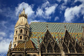 St. Stephan cathedral in Vienna — 图库照片