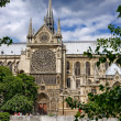 Notre Dame de Paris — Stock Photo #6052608