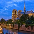 Notre Dame de Paris — Stock Photo #6052636