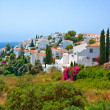 Spanish landscape, Nerja — Stock Photo #6104184