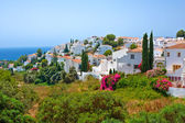 Spanish landscape, Nerja — Stock Photo