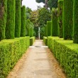 Garden of the Poets, Alcazar, Seville — Stock Photo