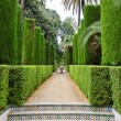Garden of the Poets, Alcazar, Seville - 图库照片