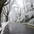 Winter in Washington DC: Palisades - Stock Photo