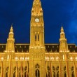 Stock Photo: Town hall in Vienna at night