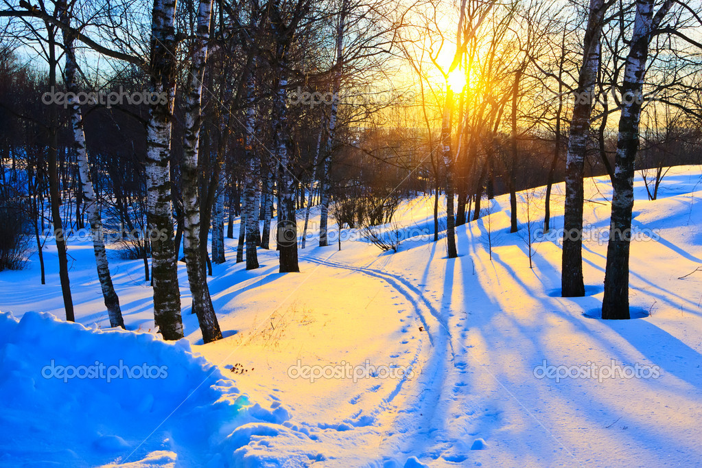 Beautiful sunset in a winter park, Russia — Stock Photo #6143681