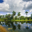 Fairchild tropical botanic garden — Stock Photo #6154859