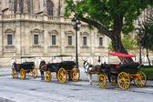 Pferde und karren außerhalb der kathedrale von sevilla — Stockfoto