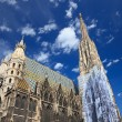 St. Stephan cathedral in Vienna - ストック写真