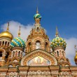 Church of the Savior on Spilled Blood, St. Petersburg — Stock Photo #6207369