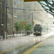 Rain in Calgary - Stock Photo