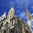 St. Stephan cathedral in Vienna - Stockfoto