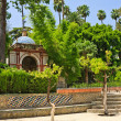 Garden in Alcazar Palace — Stock Photo #6366078