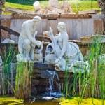Park in Schonbrunn, Vienna — Stock Photo #6366120