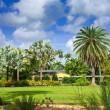 Fairchild tropical botanic garden — Stock Photo #6377271