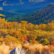 Stock Photo: Autumn in Shenandoah National park