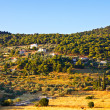 Green valley, Poros — Stock Photo