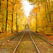 Railway in autumn forest — Stock Photo #6390407