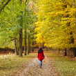 Walking in autumn park — Stock Photo