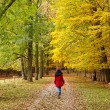 Walking in autumn park — Stock Photo #6390442