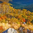 Shenandoah National park - Stock Photo