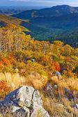Shenandoah nationaalpark — Stockfoto
