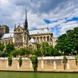 Notre Dame de Paris — Stock Photo #6445708