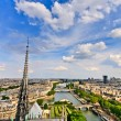 View on Paris from Notre Dame, France — Stock Photo