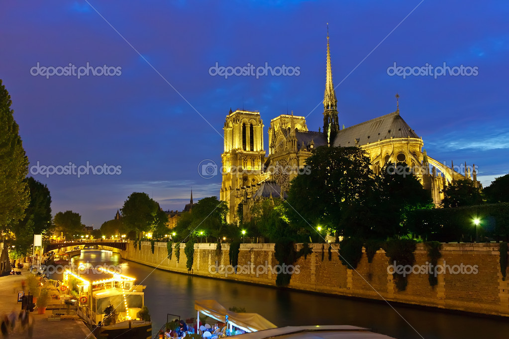 Notre Dame de Paris at night — Stock fotografie #6455141