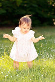 Little girl in a meadow — Photo