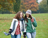 Two pretty girls having fun in autumn park — Stok fotoğraf