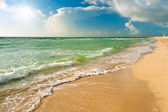 Praia em miami, fl — Foto Stock
