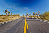 Joshua Tree National Park, Mojave Desert, California — Stock Photo