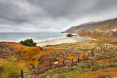 Beach in Big Sur, California, US — Stock Photo