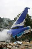 Airplane Crash — Stock Photo
