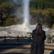 Lady Knox Geyser — Stock Photo