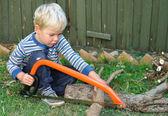 Pojke sågning, allvarligt — Stockfoto