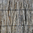 Stock Photo: Brushwood fence texture