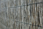 Brushwood fence background — Stock Photo