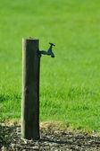 Water tap in park — Stock Photo