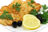 Cutlets composition — Stock Photo