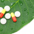 Medicine pills on the green leaf — Stock Photo #6566167