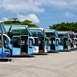 Row of tourist buses — Stock Photo