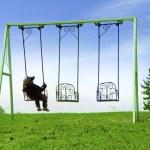 Boy on swing — Stock Photo #5944102