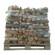 Packaged stack of freshly cut trees — Stok fotoğraf