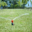 Royalty-Free Stock Photo: Sprinkler watering the green grass