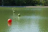 Leadership metaphor with balls — Stock Photo