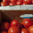 Tomatoes in boxes in Wholesale market — Stock Photo