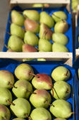 Pears in the crates in Wholesale market — Stock Photo