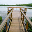 Bridge over the lake — Stock Photo